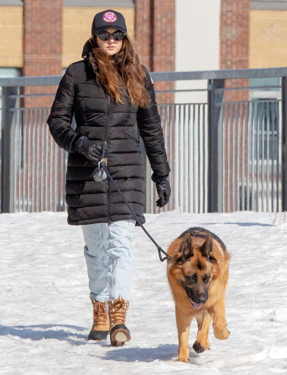 <p>Shailene Woodley walks her dog on Tuesday while in Montreal to shoot her upcoming film <em>Misanthrope</em>.</p>