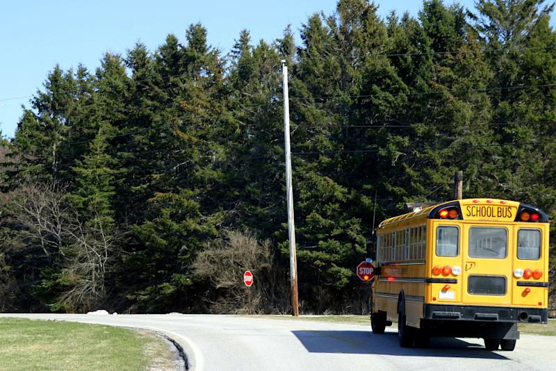 A school bus is on the road.