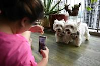 Er says she is selective about which products the dogs promote (AFP/Catherine LAI)