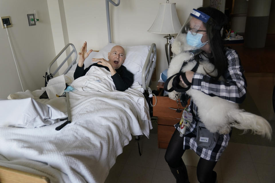 Jeff Philipson, 80, left, exclaims as therapeutic activities staff member Kate DelPizzo arrives for a visit with Zeus, a bichon frise, at The Hebrew Home at Riverdale in New York, Wednesday, Dec. 9, 2020. New dog recruits are helping to expand the nursing home's pet therapy program, giving residents and staff physical comfort while human visitors are still restricted because of the pandemic. (AP Photo/Seth Wenig)