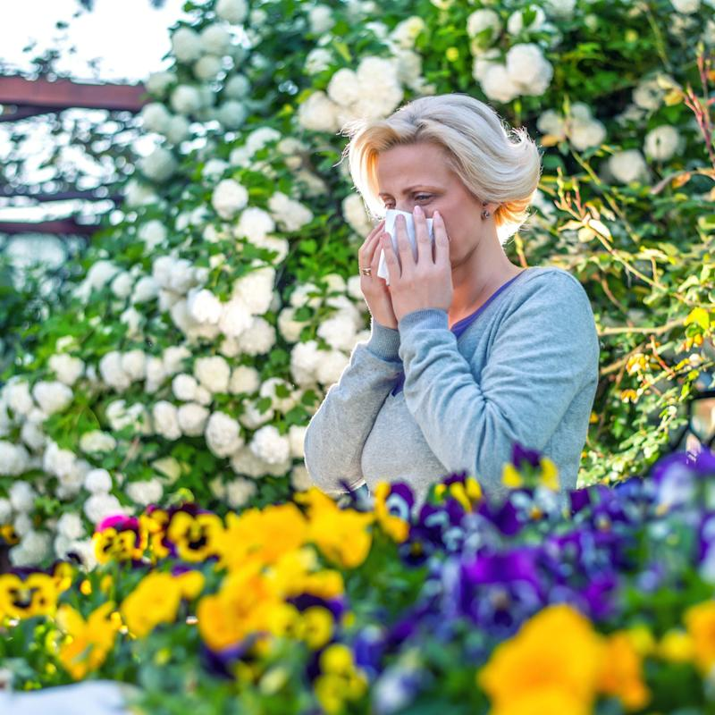 Hay fever - Credit: Getty Images