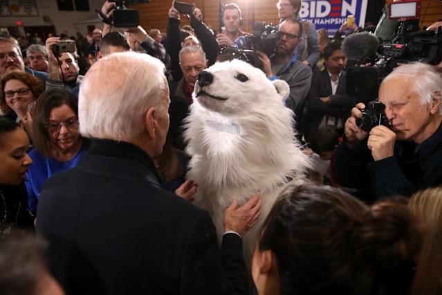 Joe Biden greets a person in a polar bear costume during a campaign event in Hudson, N.H. (Justin Sullivan/Getty Images)