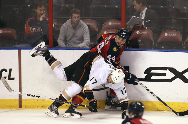 Florida Panthers' Erik Gudbranson (44) and Anaheim Ducks' Dustin Penner (17) look for the puck during the second period of an NHL hockey game in Sunrise, Fla., Tuesday, Nov. 12, 2013. (AP Photo/J Pat Carter)