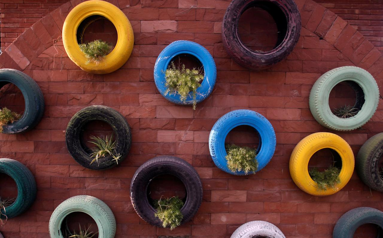 Worn and discarded car tyres are seen used as plant pots on a wall along a road in Peshawar, Pakistan August 17, 2017. REUTERS/Fayaz Aziz