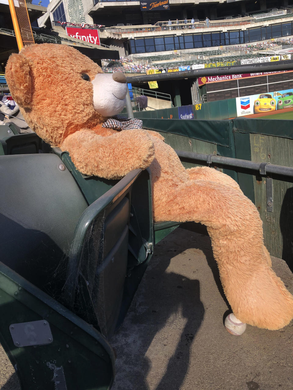 A baseball sits below a stuffed bear seated at Oakland Coliseum after Game 1 of an American League wild-card baseball series between the Oakland Athletics and the Chicago White Sox, Tuesday, Sept. 29, 2020, in Oakland, Calif. (AP Photo/Janie McCauley)