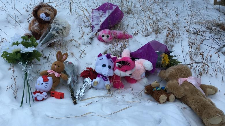 Toronto police to examine SUV, seek witnesses after girl pinned between 2 vehicles dies