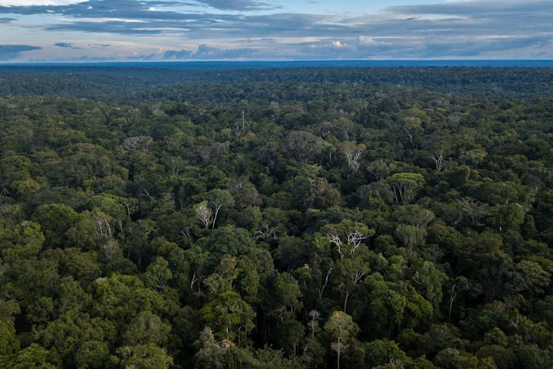 """(Bloomberg) -- Brazil's President Jair Bolsonaro attacked the """"environmental psychosis"""" of European leaders concerned over his administration's plans to develop the Amazon rainforest, and insisted that the numbers showing sharply increased rates of deforestation were """"lies.""""""""The Amazon is Brazil's -- not yours,"""" he said Friday at a meeting with foreign journalists at the presidential palace in Brasilia. Questioned over numbers from Brazil's National Institute of Space Research, INPE, showing an 88% rise in deforestation between June 2018 and June 2019, he said the data was false and that he would summon the head of the institute for an explanation.Bolsonaro defended his government's plans to develop the region and invited other countries to work with Brazil to exploit its biodiversity. He reiterated his invitation to France's President Emmanuel Macron and German Chancellor Angela Merkel to fly over the Amazon in order to show them how much remained untouched. European leaders have repeatedly expressed concern over Bolsonaro's environmental policies. Irish and French lawmakers have threatened to scuttle the European Union's recent trade deal with Mercosur unless there are significant changes to Brazil's current practices.Also on Friday, local news magazine Veja published an interview with a member of a self-described eco-extremism group that announced plans to kill the president over his environmental policies. Bolsonaro played down its significance. """"There's always going to be the risk of an attack on me or any other global leader,"""" he said.Stimulus MeasuresWith the Brazilian economy teetering on the brink of another recession and unemployment still in double-digits, Bolsonaro said that pension reform was just a first step toward improving its prospects, but that the government does not have the power to create jobs. He also spoke in favor of plans to simplify the tax system to make Brazil an easier place to do business.On the question of inequality, Bolsonaro criti"""
