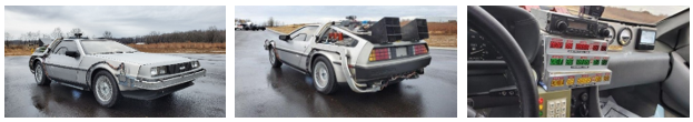 The DeLorean from Back To The Future (Credit: US Marshals Service)