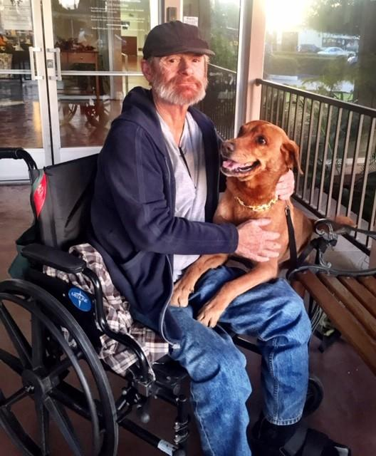 """Hobo reunited with Dreamer after four months apart while Hobo dealt with surgery. <span class=""""copyright"""">(Deborah Barnes)</span>"""