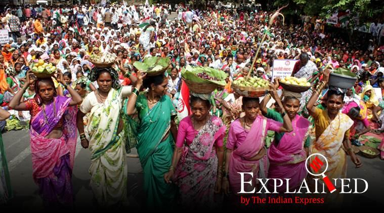 Explained: Why amendments to the Indian Forest Act have met with protests