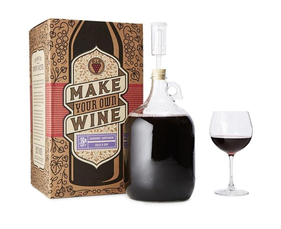 <p>This <span>Cabernet Sauvignon Wine Making Kit</span> ($60) will be fun to figure out.</p>