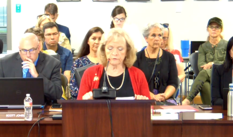 Gayle Ruzicka, Utah Eagle Forum president, speaks at the Utah school board meeting on Thursday, Sept. 5, 2019, in regards to a teachers' guidebook addressing sexual education. (Photo: YouTube)