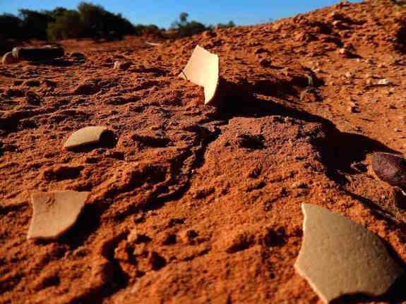 Ancient eggshell fragments shown in an Australian sand dune.