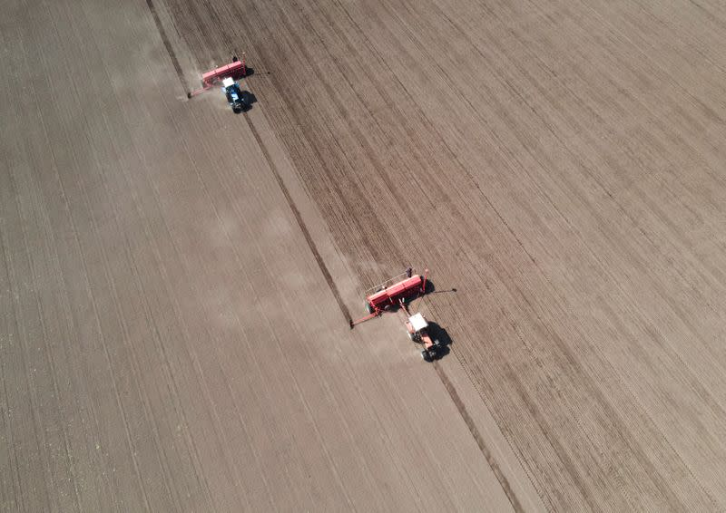 Agricultural workers operate tractors with seeders to sow soybeans in Kiev region