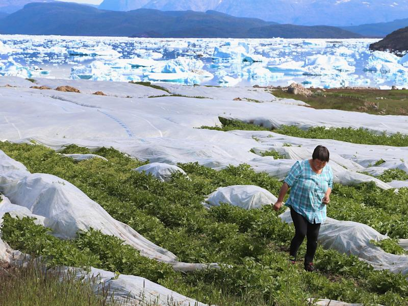 Communities in the Arctic are particularly susceptible to climate change, where the effects of global warming are thought to be far more extreme than the global average: Joe Raedle/Getty Images