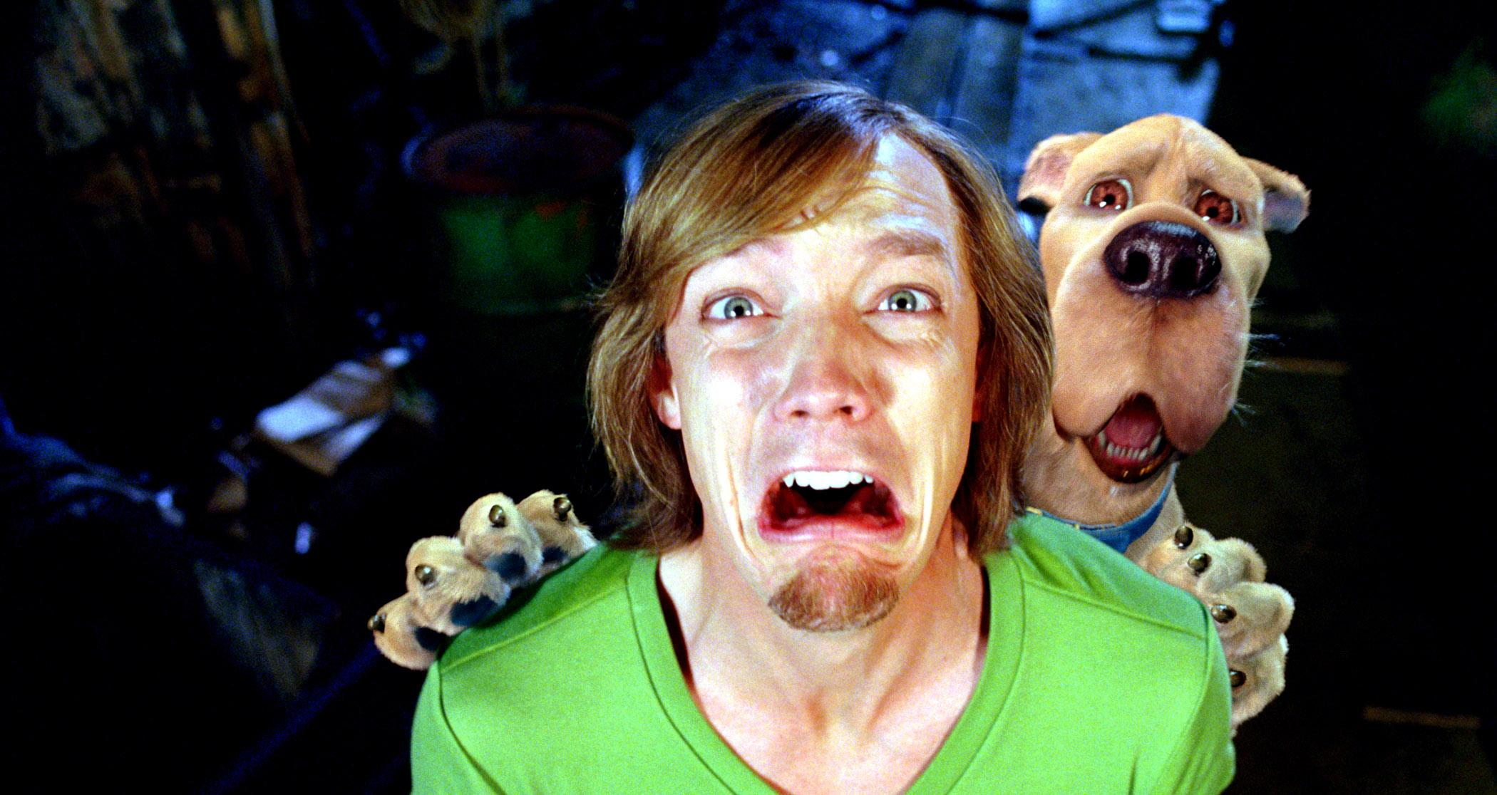 In the live-action movies, Scooby-Doo's fellow scaredy cat Shaggy was played by Matthew Lillard (Photo: Everett Collection)