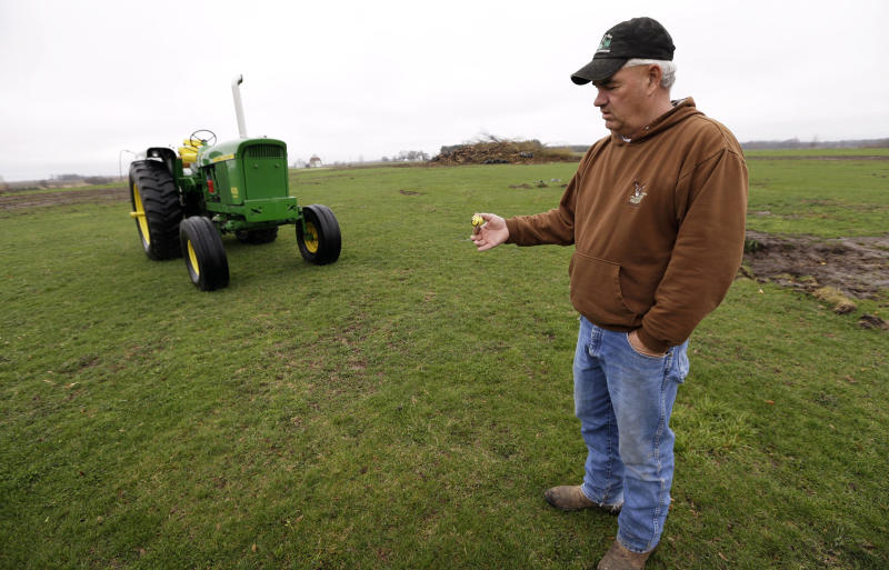 In this Wednesday, April 10, 2013 photo, farmer Clark Kelly holds a golf ball he dug out of a fairway on the Hend-Co-Hills Golf Course, in Biggsville, Ill. Kelly purchased the course, which was in foreclosure, with plans to plow it into farm land. Across the Midwest, farmers are planting crops on almost any scrap of available land to take advantage of consistently high corn and soybean prices. (AP Photo/Charlie Neibergall)