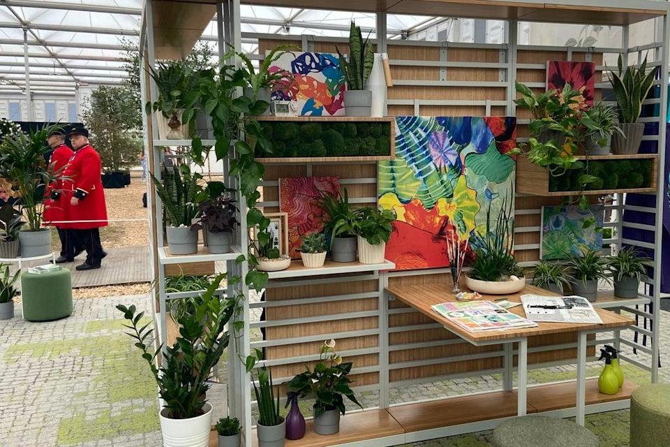 The school's sixth form centre, complete with money-plants, palms, moth orchids and cheeseplants, was recreated at the Chelsea Flower Show  (GDST)