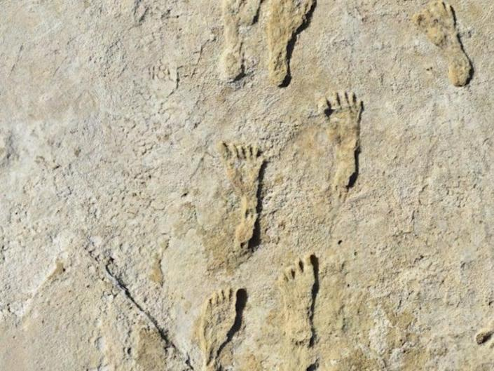 Fossilized footprints found in New Mexico (NPS, USGS and Bournemouth University)
