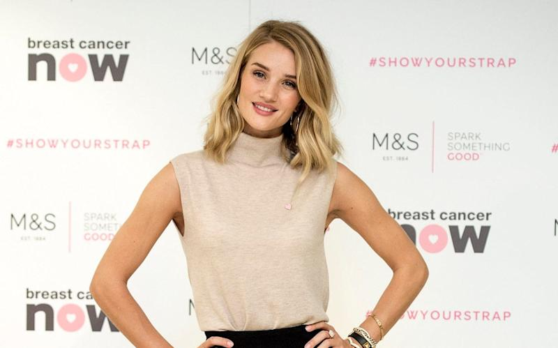 Income stocks, like retailer M&S, for which model Rosie Huntington-Whiteley is an ambassador, could be a good choice after changes to dividend taxes - Telegraph Media Group and © Geoff Pugh Photgraphy Ltd all rights reserved