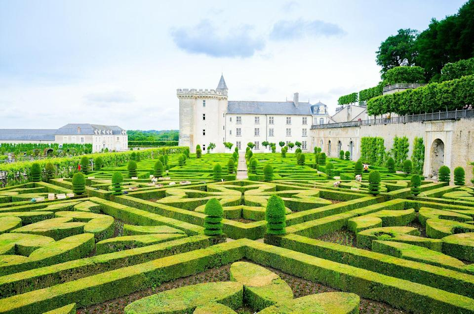<p>Jean Le Breton, Minister of Finance for François I, had visions of grandeur when he acquired the land and former ancient fortress in which Château de Villandry stands today. Breton drew upon his own architectural skills and interest in gardening to developed a carefully laid , ornamental garden that connected seamlessly to the chateau's interiors. </p><p>However, as the property switch owners, the verdant oasis underwent many drastic changes. It wasn't until 1906 when new owner Joachim Carvallo pour time and effort into that the gardens finally returned to their Renaissance roots. </p>