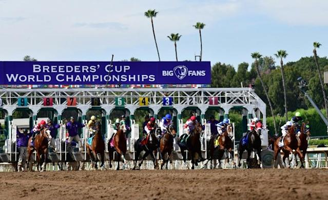 The field breaks from the gate in the Breeders' Cup Dirt Mile won by Spun to Run at Santa Anita (AFP Photo/Frederic J. BROWN)