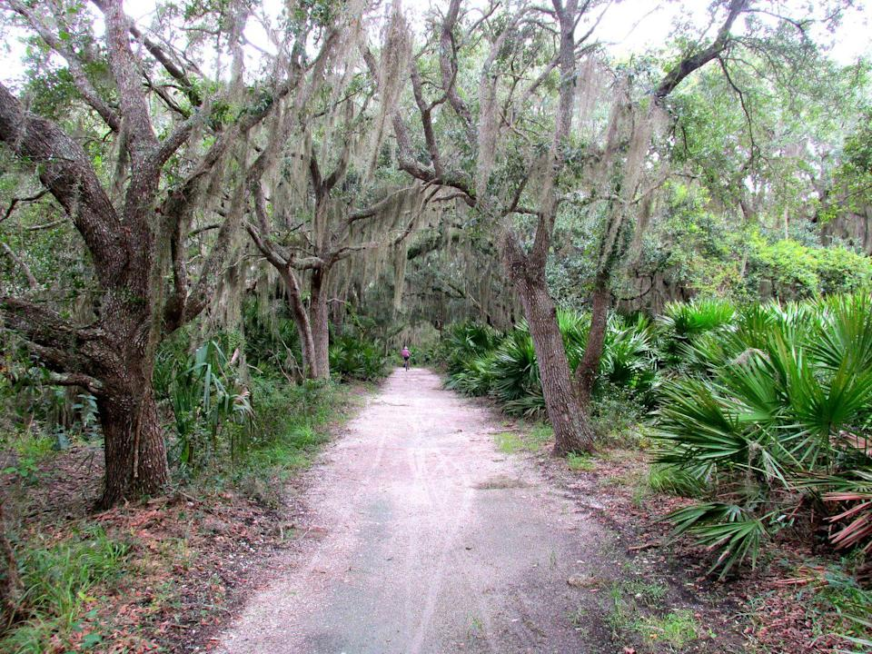 """<p>The biking and hiking trails of the <a href=""""https://www.tripadvisor.com/Attraction_Review-g35034-d11732975-Reviews-Jekyll_Island_Trail_System-Jekyll_Island_Golden_Isles_of_Georgia_Georgia.html"""" rel=""""nofollow noopener"""" target=""""_blank"""" data-ylk=""""slk:Jekyll Island Trail System"""" class=""""link rapid-noclick-resp"""">Jekyll Island Trail System</a> provide plenty of tourist diversions, like a miniature golf course, local hotels, and historical markers. And it doesn't get much more Southern than watching the Spanish moss sway in the trees along the trails.</p><p><br><a class=""""link rapid-noclick-resp"""" href=""""https://go.redirectingat.com?id=74968X1596630&url=https%3A%2F%2Fwww.tripadvisor.com%2FAttraction_Review-g35034-d11732975-Reviews-Jekyll_Island_Trail_System-Jekyll_Island_Golden_Isles_of_Georgia_Georgia.html&sref=https%3A%2F%2Fwww.countryliving.com%2Flife%2Ftravel%2Fg24487731%2Fbest-hikes-in-the-us%2F"""" rel=""""nofollow noopener"""" target=""""_blank"""" data-ylk=""""slk:PLAN YOUR HIKE"""">PLAN YOUR HIKE</a></p>"""
