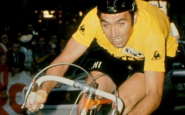 Eddy Merckx won the Tour de France five times during a glittering career - GETTY IMAGES