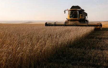 FILE PHOTO: A combine harvests wheat in a field of the Solgonskoye private farm outside the Siberian village of Talniki in Krasnoyarsk region