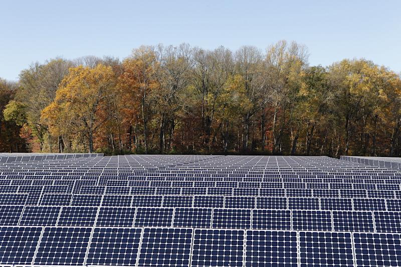 Large solar farm built with SunPower solar panels, with a forest in the background