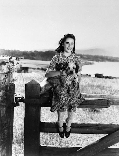 """FILE - This file photo shows young actress Elizabeth Taylor playing a girl who wins a horse in a raffle in """"National Velvet,"""" 1944. (AP Photo, File)"""