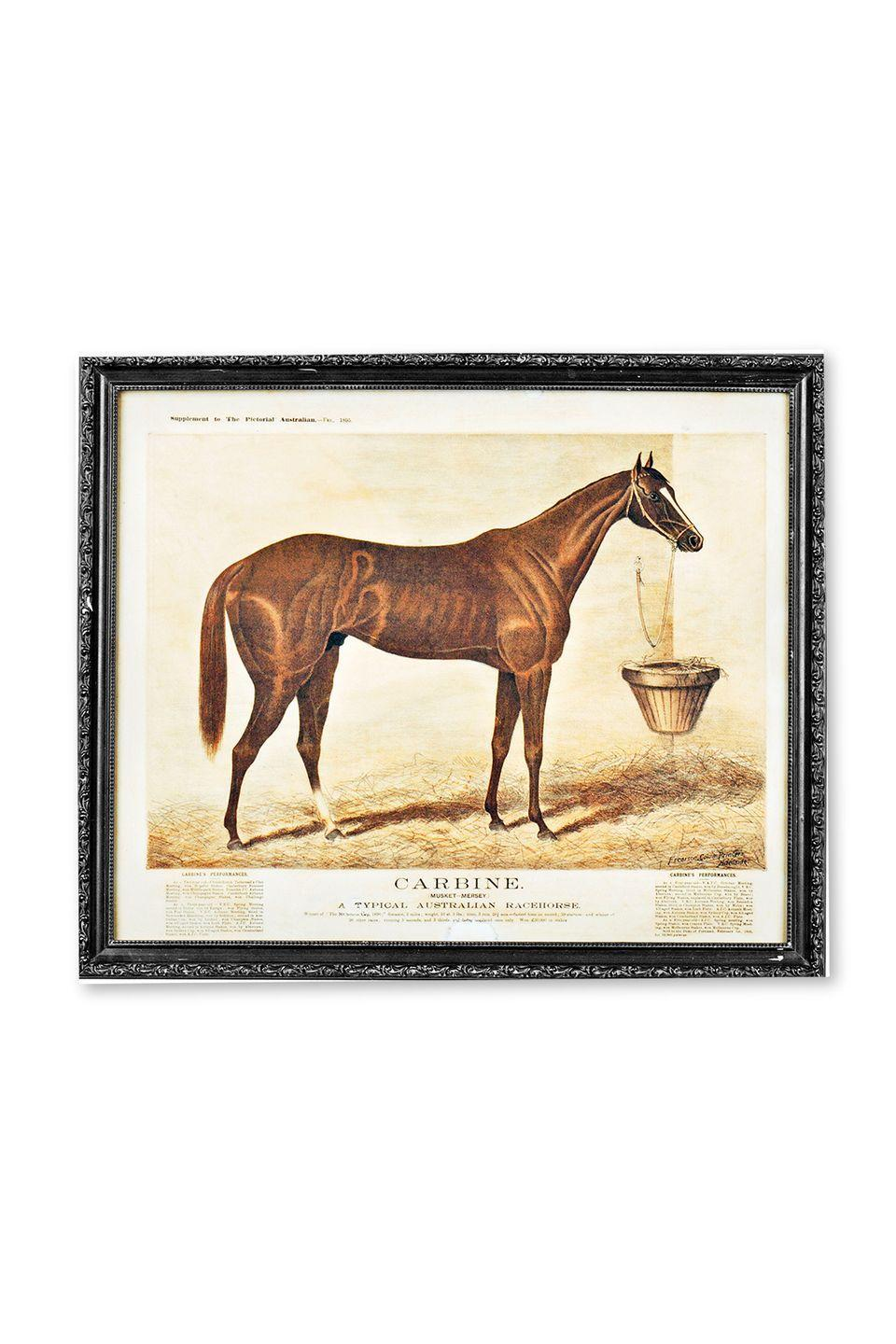 """<p><strong>What it was worth (2012):</strong> $225</p><p><strong>What it's worth now:</strong> $100</p><p>This vintage horse print would look perfect in any room boasting a farmhouse-inspired aesthetic.</p><p><strong>RELATED</strong>: <a href=""""https://www.goodhousekeeping.com/home/decorating-ideas/g30782403/farmhouse-decor-ideas/"""" rel=""""nofollow noopener"""" target=""""_blank"""" data-ylk=""""slk:25 Farmhouse Decor Ideas That Perfectly Blend Modern and Rustic Styles"""" class=""""link rapid-noclick-resp"""">25 Farmhouse Decor Ideas That Perfectly Blend Modern and Rustic Styles</a></p>"""