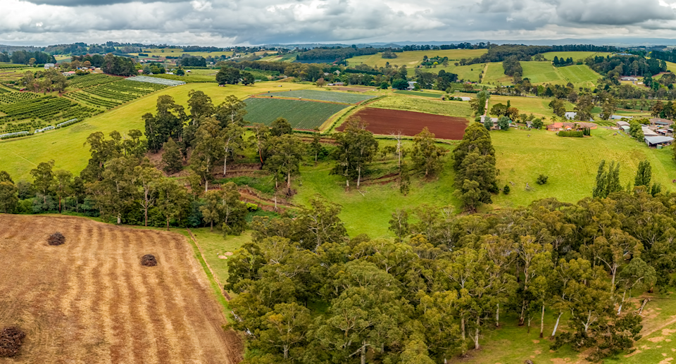 Wandin shot from above, showing trees and paddocks.