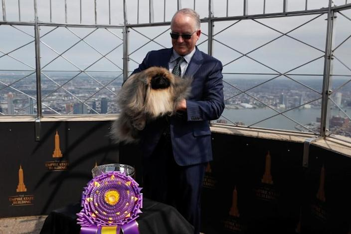 Westminster Kennel Club Dog Show in New York City