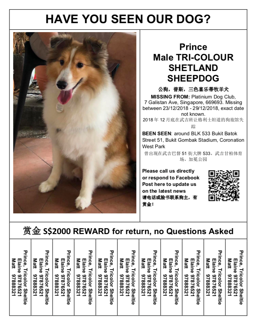 Prince remains missing as of 4 January, 2019. (Poster courtesy of Elaine Mao)