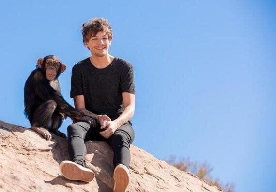 This behind-the-scenes snap from the 'Steal My Girl' video upset animal rights' activists, who were angered that the group had a chained monkey on the set of their music video.  Although a 1D spokesperson was adamant that no animals were harmed, UK-based charity Wild Futures called for the video to be pulled altogether.