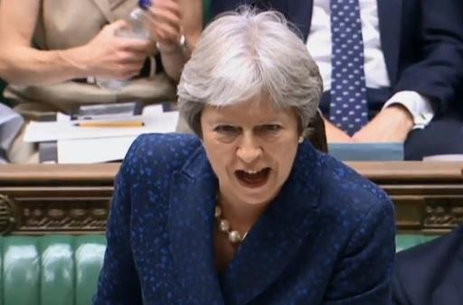British Prime Minister Theresa May's Brexit blueprint has caused outrage among eurosceptic members of her Conservative party