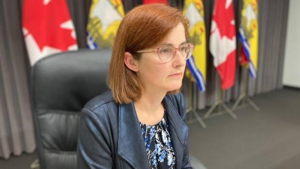 Dr. Cristin Muecke, deputy chief medical officer of health, addressed the public Thursday morning. (Jacques Poitras/CBC - image credit)