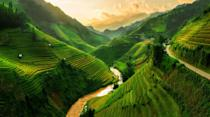 <p>Deep within the valleys and mountains of Mu Cang Chai, emerald terraces showcase the mastery and precisions of Northern Vietnam's hill tribes. The perfectly manicured rice fields span over 2,200 hectacres and thrive on a vertical terraced system developed by farmers centuries ago. Throughout the year, the color of the fields change from a deep green in the spring and summer to a sunny yellow in the fall once the rice ripens.</p>