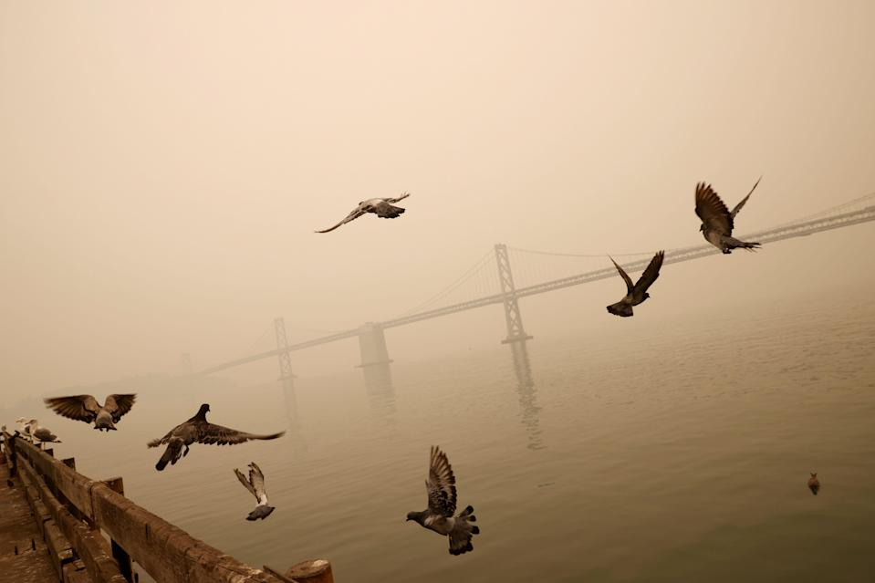 The San Francisco-Oakland Bay Bridge is seen under a smoke-filled sky due to various California wildfires earlier this month. (Stephen Lam / Reuters)