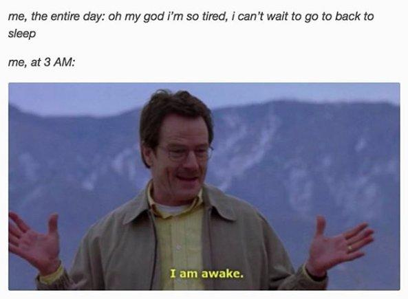 "me, the entire day: oh my god i'm so tired, i can't wait to go back to sleep. me, at 3AM: (image of Walter White from Breaking Bad saying ""I am awake."")"