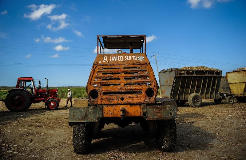 Cuba's sugar production plunged from eight million tons in the 1980s to two million tons today, but the industry is seeking foreign investment to boost production of sugar, rum, animal feed and renewable electric energy (AFP Photo/YAMIL LAGE)