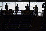 Tampa Bay Rays fans are silhouetted as they gather before Game 2 of an American League wild-card baseball series against the Toronto Blue Jays Wednesday, Sept. 30, 2020, in St. Petersburg, Fla. (AP Photo/Chris O'Meara)