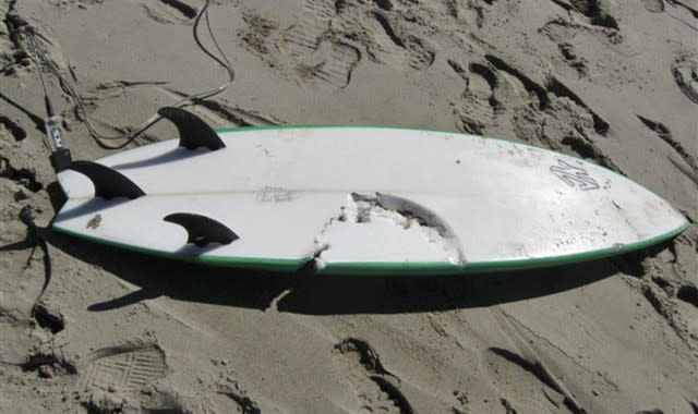This photo released by the Santa Barbara County Sheriff's Department shows the surfboard being ridden by 39-year-old surfer Francisco Javier Solorio Jr., who was fatally attacked by a shark Tuesday, Oct. 23, 2012. An expert has determined that Solorio was killed by a 15- to 16-foot great white shark, according to Ralph Collier of the Shark Research Committee. He was bitten in the upper torso in the waters off Surf Beach on Vandenberg Air Force Base in Santa Barbara County and died at the scene despite a friend's efforts to save him. (AP Photo/Santa Barbara County Sheriff)