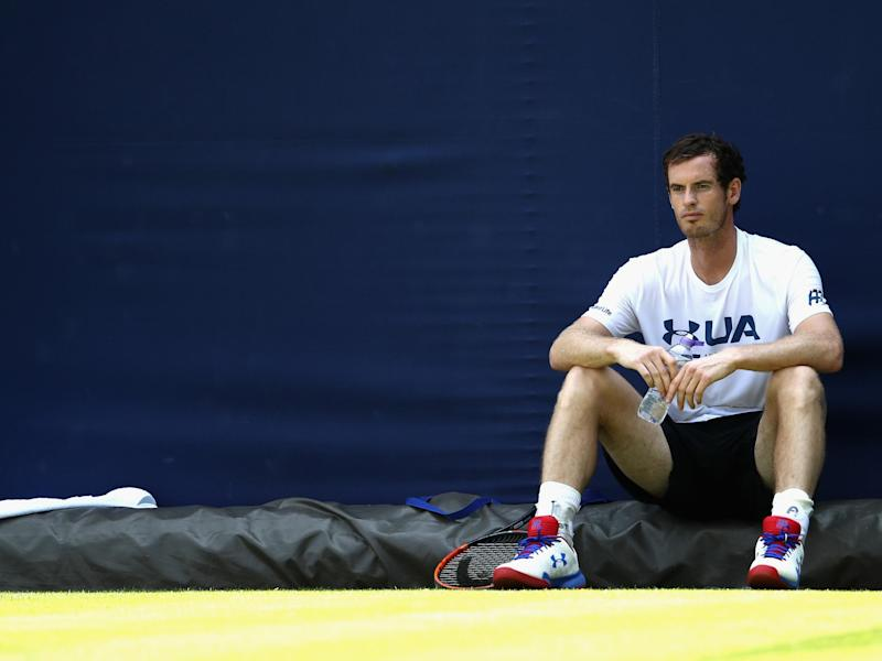 Murray is the defending champion at Queen's Club: Getty