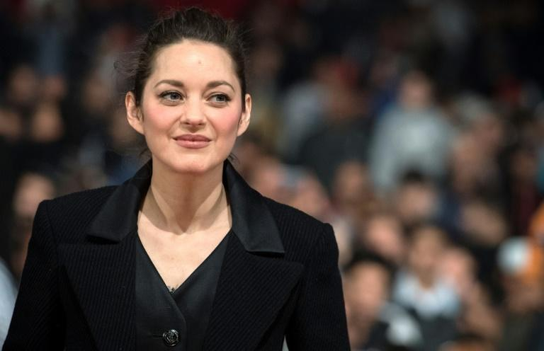 The film is about 'the need for recognition', Cotillard says