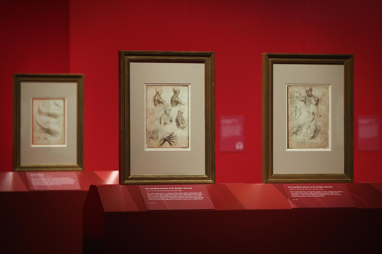 LONDON, ENGLAND - APRIL 30:  Drawings by Leonardo da Vinci are displayed as part of a new exhibition entitled 'Anatomist: Inside His Mind, Inside The Body' at The Queen's Gallery, Buckingham Palace on April 30, 2012 in London, England. The exhibition is the largest collection ever of the artist's studies of the human body, and will show at The Queen's Gallery from May 4 - October 7, 2012.  (Photo by Dan Kitwood/Getty Images)
