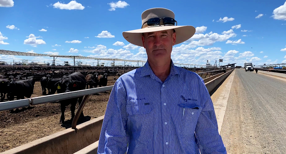 NSW farmer David Chadwick stands in his cattle feedlot. He wears a wide brimmed hat.
