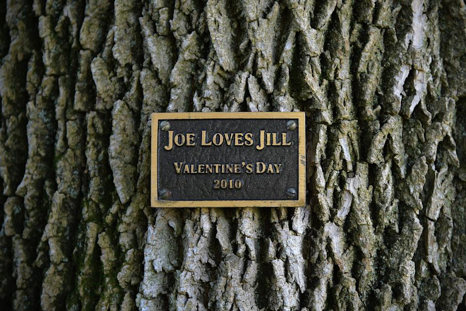 Vice President Joe Biden surprised his wife with a tree swing and a commemorative plaque on the grounds residence on Valentine's Day in 2010. (Photo: The Washington Post via Getty Images)