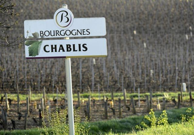 No Chablis? Burgundy winemakers up in arms over proposed shake-up
